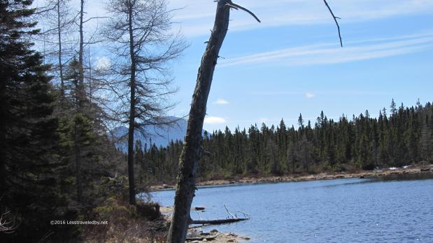 Stillwater-Shoal Pond-Thoreau Falls Loop April2016